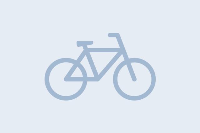 Platzhalterbild infraVelo Rad-Icon